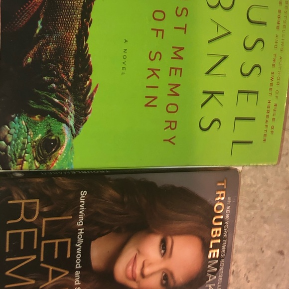 Other - Book bundle Troublemaker & Lost Memory of Skin
